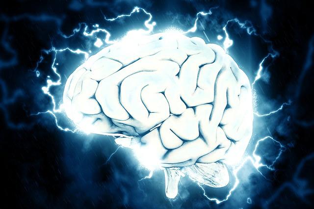 いらいらを感じる脳の仕組み